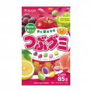Żelki fasolki Tsubu Fruits Mix Gummy Kasugai